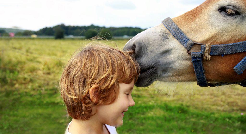 Reitenprojekt für Kinder mit Autismus